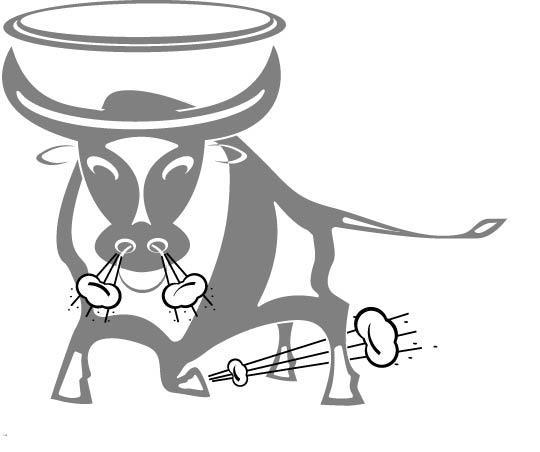 Holy_Bull