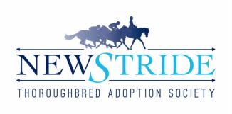 New_Stride