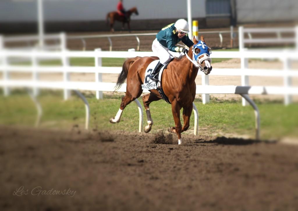 Race 2 Kilohana 2