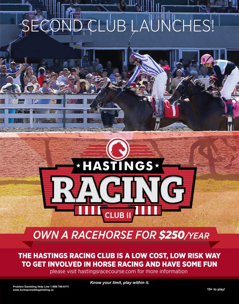 hastings-racing-club-2-ad-dec-2015-805x1024